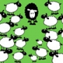 Are you the black sheep of your family