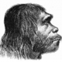 Neanderthals interbred with humans